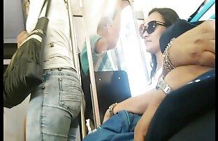 الحمار البرازيلي الكبير في القطار